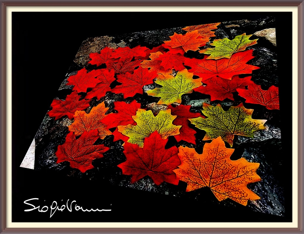 38 - foglie morte